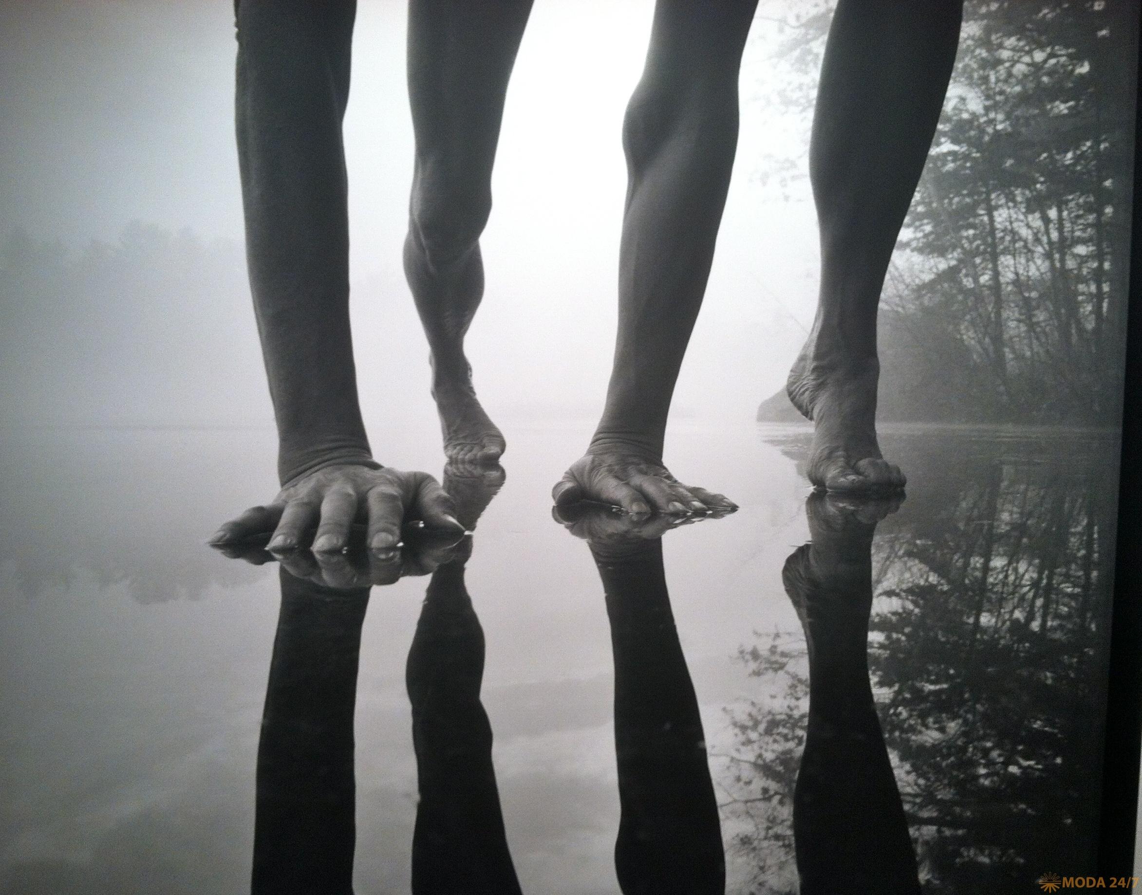 ©Arno Rafael Mikkinen. Fosters Pond, Millennium, Andover, Massachusetts. 2000. Моменты откровения Минккинена