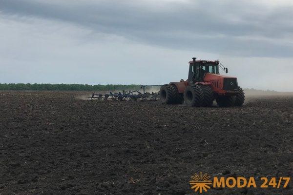 Компания выращивает сырье на землях собственного сельхозпредприятия