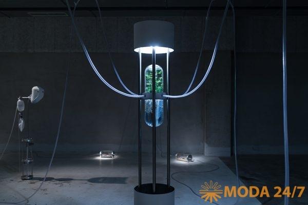 Интерактивная биотехнологическая инсталляция Earthlink, Laboratoria Art&Science, Саша Спачаль (Saša Spačal)